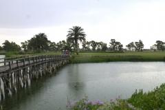 23 giugno 2016 - Marediroma Golf Club