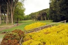 13 aprile 2016 - Olgiata Golf Club